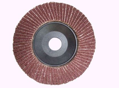 Picture of Лепестковый тарельчатый круг FLD-10 125x22,23 P100